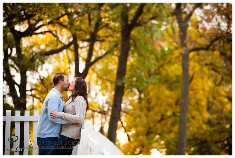 02-minneapolis-st-paul-mn-engagement-and-wedding-photography