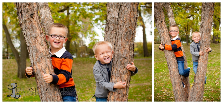 04-French-Park-Minneapolis-MN-family-brothers-Photography-in-a-tree