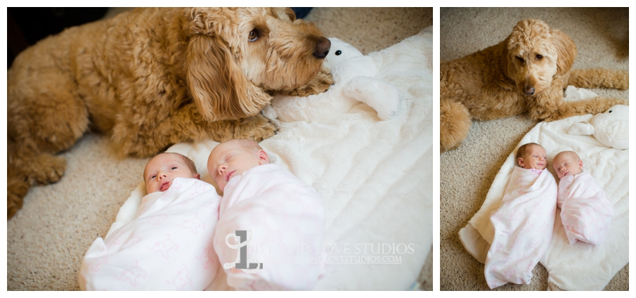 15-minneapolis-st-paul-newborn-lifestyle-photographer-with-dog