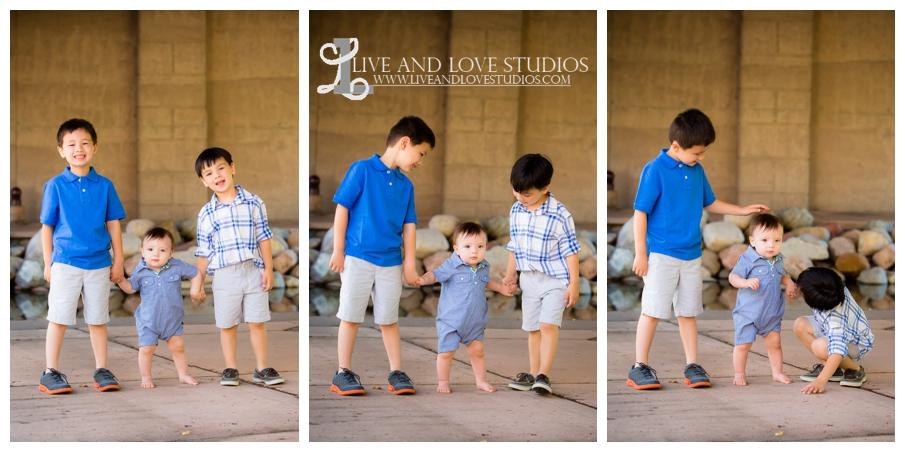 Minneapolis-St-Paul-MN-Natural-Light-Family-Brothers-Photographer_0008.jpg
