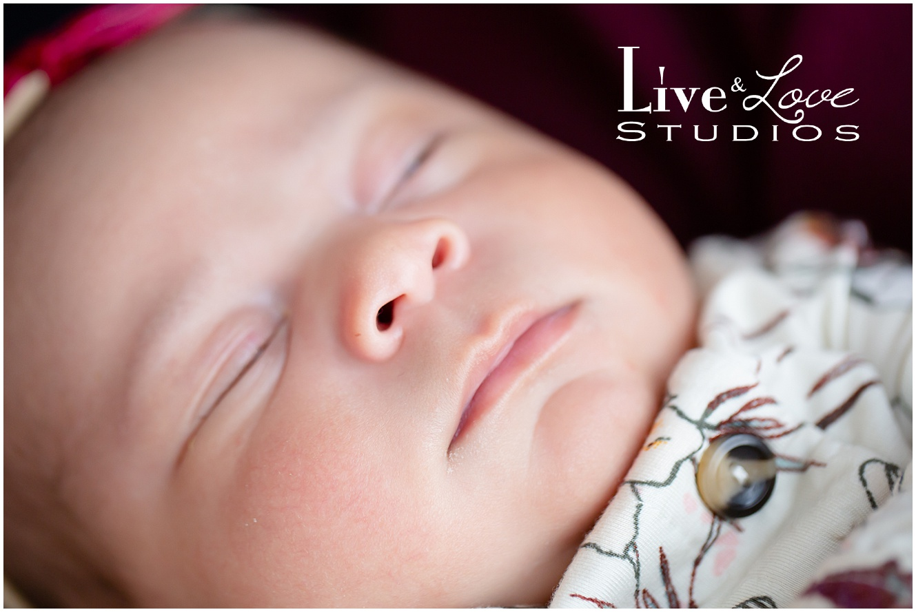 eagan-mn-family-newborn-lifestyle-photography_0506.jpg